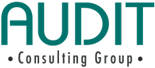 Audit Consulting Group
