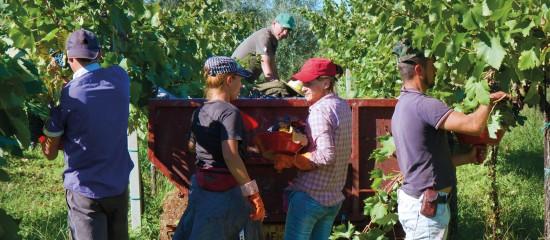 Société agricole: quels liens avec le foncier?