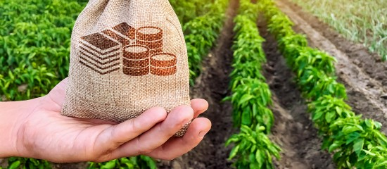 En2017, les agriculteurs ont gagné, en moyenne, 1650€ par mois